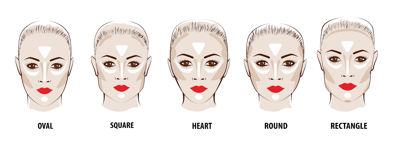drawings of five different kinds of female face shapes